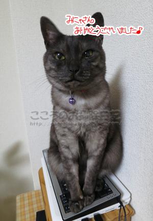 ribuarigatou001-09-2012.jpg