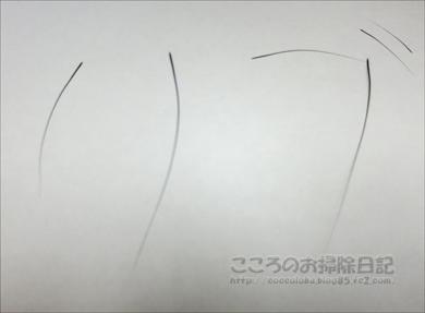ribuhige001-08-2012.jpg