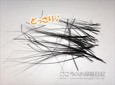 ribuhige003-08-2012.jpg