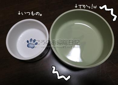 ribuomizu002-10-2012.jpg