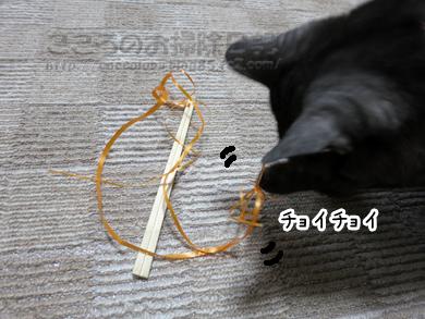 ributohimo2-2012-02.jpg