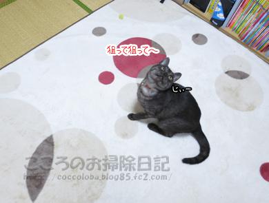 ributohimo8-2012.jpg
