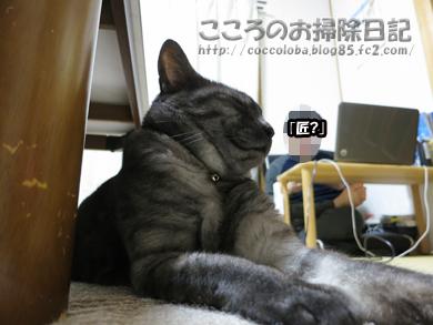 ributotakumi-2012.jpg