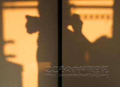 ributoyuyake001-2012.jpg