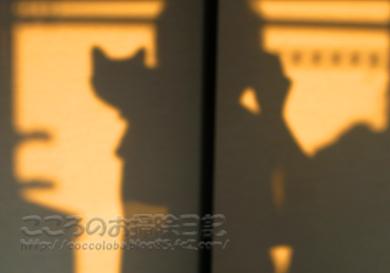 ributoyuyake002-2012.jpg