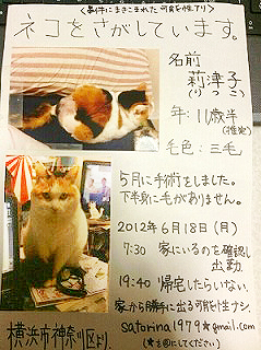 ritsuko002.jpg