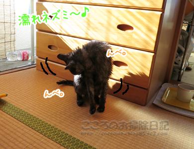 shanpu-ribu002-09-2012.jpg
