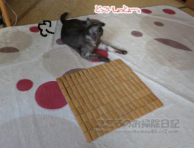 takemattoribu002-2012.jpg
