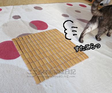 takemattoribu003-2012.jpg