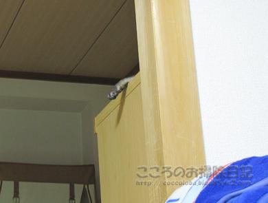 tansuueribu009-07-2012.jpg
