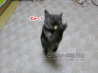 tegusuribu004-2012.jpg