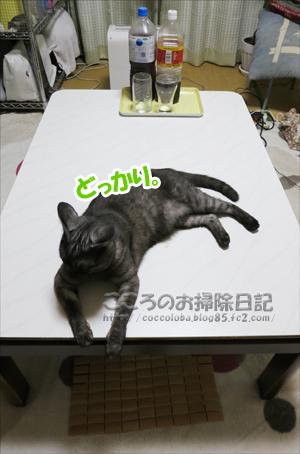 tsukueueribu002-07-2012.jpg