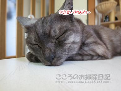 tsukueueribu006-07-2012.jpg