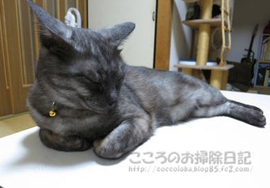 tsukueueribu011-07-2012.jpg