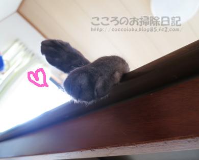 tsukueueribu011-08-2012.jpg