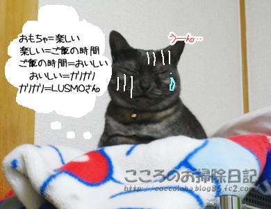 u-nribu-2011_20111201185435.jpg