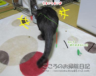 umaumaribu2-2011.jpg