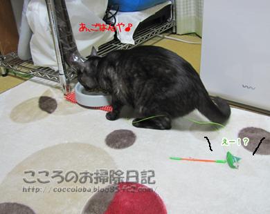 umaumaribu3-2011.jpg