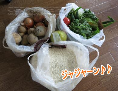 yasai001-08-2012.jpg