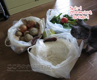 yasaitoribu002-08-2012.jpg
