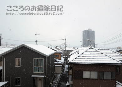 yuki2-2012.jpg