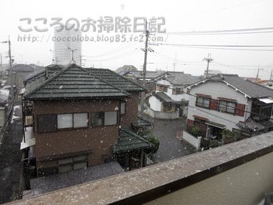 yukikeshiki2-2012.jpg