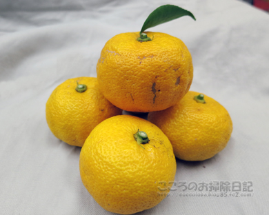 yuzu001-11-2012.jpg