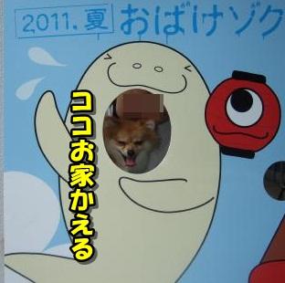20110808_11.jpg