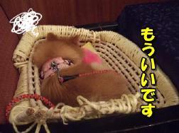 20110809_8.jpg