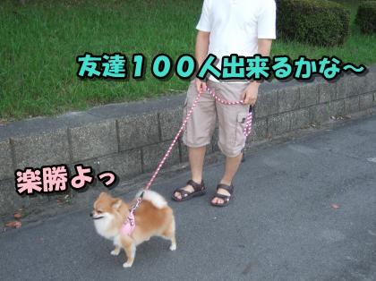 20110904_1.jpg