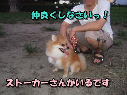 20110907_1.jpg