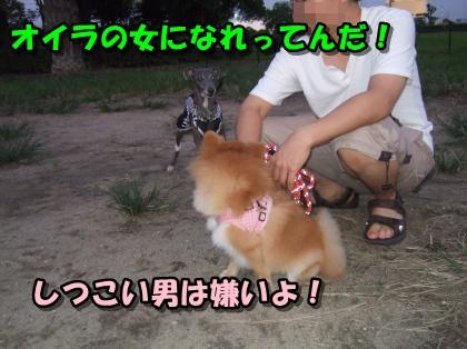 20110907_2.jpg