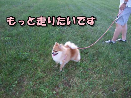 20110915_16.jpg