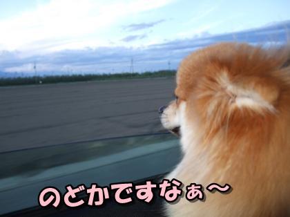 20110915_6.jpg
