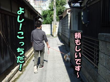 20110920_5.jpg