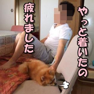 20110921_3.jpg