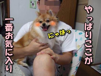 20110921_7.jpg