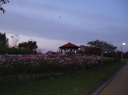 20111121_9.jpg