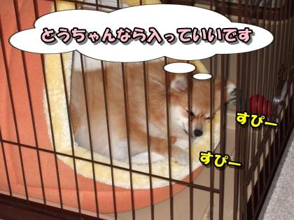 20111209_12.jpg