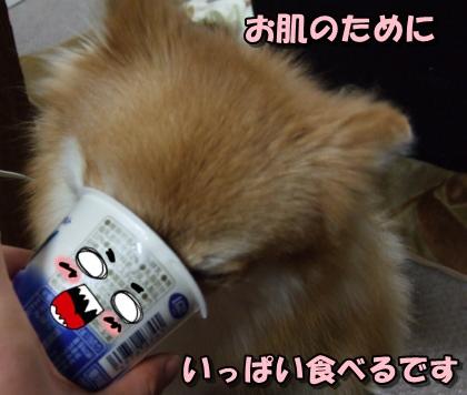 20111220_10.jpg