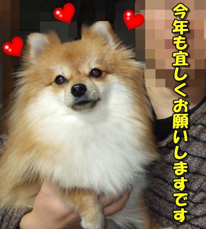20120110_1.jpg