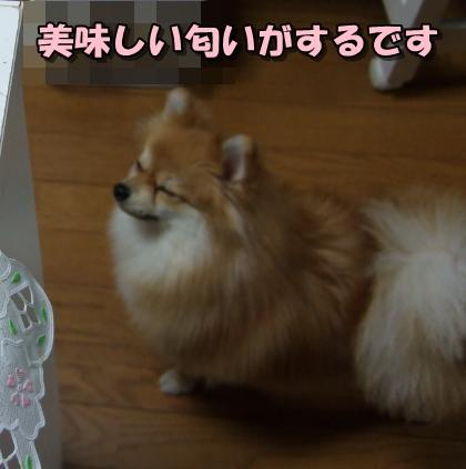 20120120_1.jpg