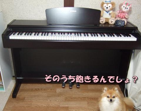 マイ電子ピアノ