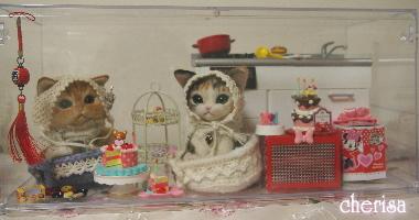 三毛猫マーシーちゃんとペルシャ君のその後・・・♪