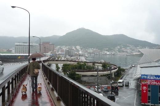 1 函館港