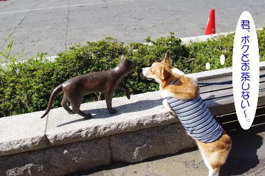 猫ちゃんにイチコロ