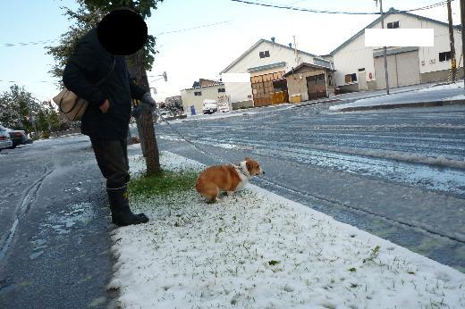 9 初雪ウ○チ