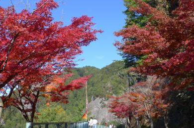 鳳来寺山紅葉2013-1