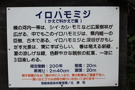 20131109_21b.jpg