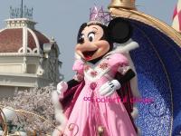 ミニー w/桜
